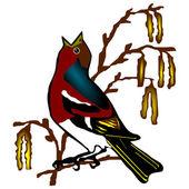 Bird chaffinch (Fringilla coelebs) — Stock Vector