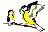 Bird oxeye (Pants major) with baby bird — Stock Vector