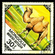 Stock Photo: MONGOLIA - CIRCA 1978: A postage stamp