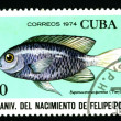 Royalty-Free Stock Photo: CUBA - CIRCA 1974: A postage stamp