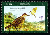 CUBA - CIRCA 1976: A postage stamp — Stock Photo