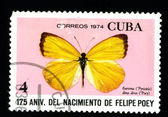 CUBA - CIRCA 1974: A postage stamp — Stock Photo