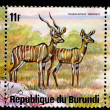 REPUBLIC OF BURUNDI - CIRC1976: stamp — Stock Photo #2068834