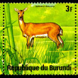REPUBLIC OF BURUNDI - CIRC1976: stamp — Stock Photo #2068873