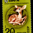 USSR - CIRC1974: postage stamp — Stock Photo #2074339