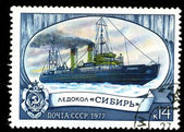 USSR - CIRCA 1977: A postage stamp — Stockfoto