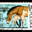 POLAND - CIRCA 1978: A postage stamp — Stock Photo