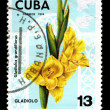 CUB- CIRC1974: postage stamp — Stock Photo #2299687