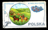 POLAND - CIRCA 1980: A postage stamp — Stock Photo
