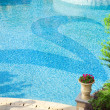 Beautiful swimming pool — Stock Photo #1878917