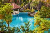 Swimming pool in garden — Stock Photo