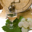 Still-life with white wine - Stock Photo