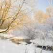 Winter landscape with the river - Stock Photo