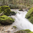 Falls on  mountain river - Stockfoto