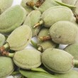 Crop of young unripe almonds nuts - Stock Photo