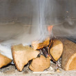 Fire wood burn in a fireplace — Stock Photo #1877685