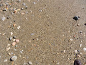 Wet sea sand — Stock Photo