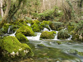 Falls on the small mountain river — Stock Photo