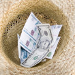 Money in hat — Stock Photo