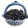 Berries of a black currant in a vase - Stock Photo