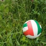 Soccer ball — Stock Photo #2036980