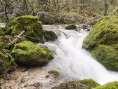 Dağ nehir ile düştü — Stok fotoğraf