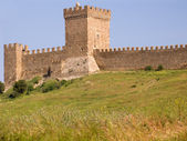Stronghold of genoese — Stock Photo