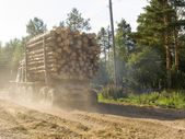 The timber carrying vessel — Stock Photo