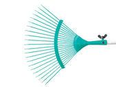 Turquoise raker — Stock Photo