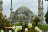 Blue Mosque, Istanbul — Stock Photo