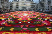 Flower carpet in Brussels — Stock Photo