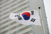 Waving flag of South Korea — Stock Photo