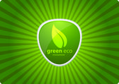Green eco — Stock Vector