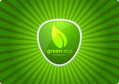 Green eco — Stock Vector