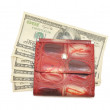 Banknotes dollars in leather red purse — Stock Photo