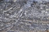 Fissure in asphalt — Stock Photo