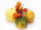 Winter bouquet and pumpkins — Stock Photo