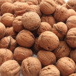 Stock Photo: Walnut nut
