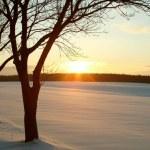 Scenic winter sunset — Stock Photo