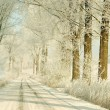 Winter road at sunrise — Stock Photo