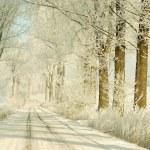 Winter road at sunrise — Stock Photo