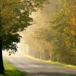 Misty country road at dawn — Stock Photo