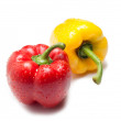 Two capsicum — Stock Photo