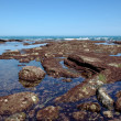 Rocks at low tide from Atlantic Ocean — Stock Photo