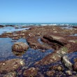 Rocks at low tide from Atlantic Ocean — Stock Photo #1892525
