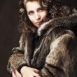 Royalty-Free Stock Photo: Romantic girl wearing furs