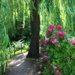 Stock Photo: Garden at Giverny, France