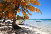 Tropical beach at Punta Cana — Stock Photo