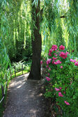 Jardin à giverny, france — Photo