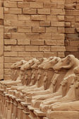 Sculptures at Karnak temple — Stock Photo